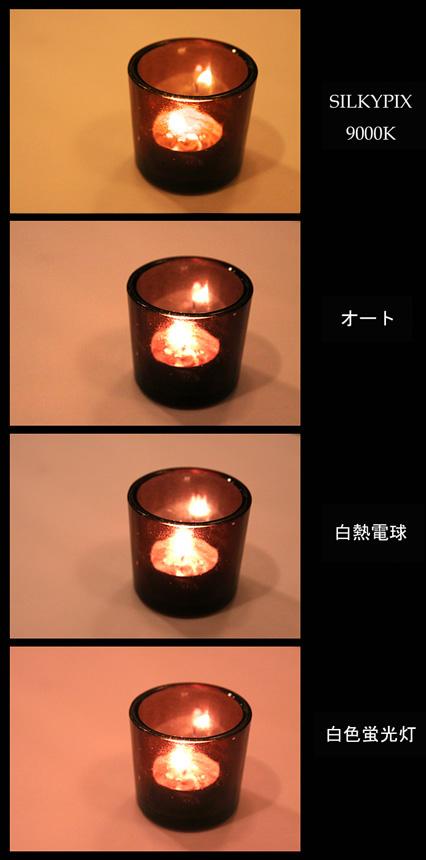 b0067789_21361234.jpg