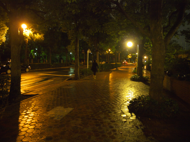 東京の風景 都会の灯り_f0024992_23174268.jpg