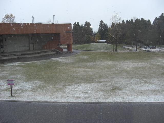 雪やこんこ、あられやこんこ♪_d0027501_1313580.jpg