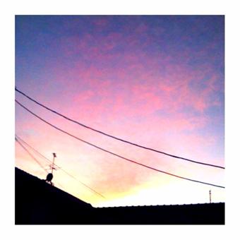■ピンクやったね_d0051613_18224899.jpg