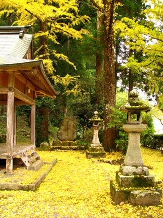 黄葉もさかり 岩戸落葉神社_e0048413_2258373.jpg