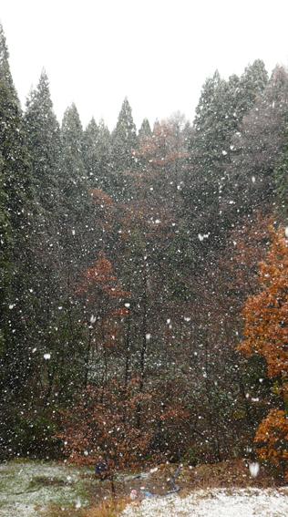 *** 初雪 ***_e0162117_113777.jpg