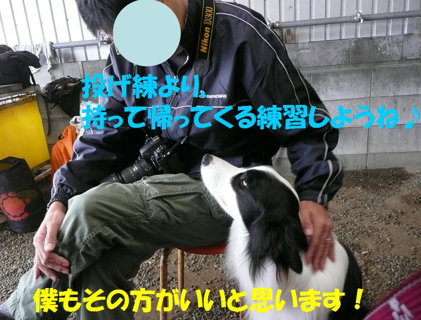 c0147241_2211086.jpg