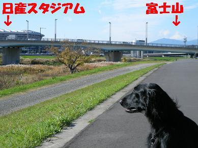 f0107145_2273269.jpg