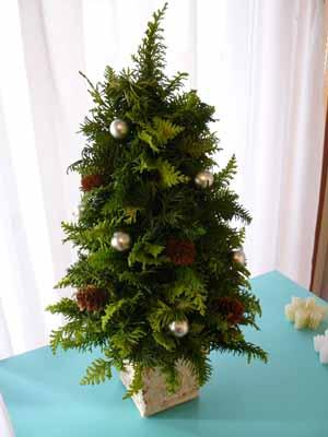 クリスマスツリーを作ろう!_e0158653_23223534.jpg