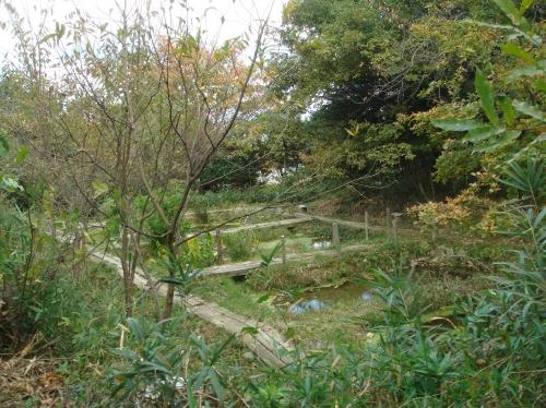 泉佐野丘陵緑地運営委員会議題検討_c0108460_15452129.jpg