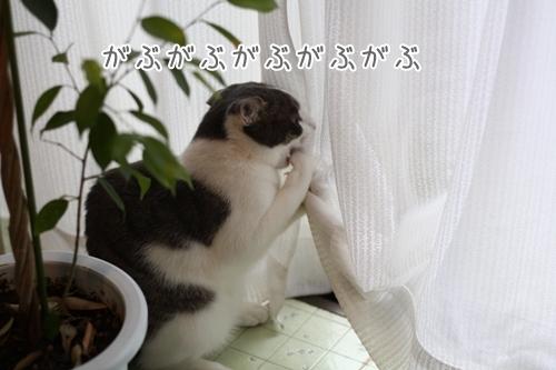 f0184675_2110381.jpg