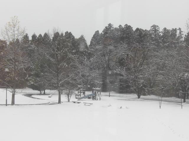 雪景色★11月20日_d0027501_1147341.jpg