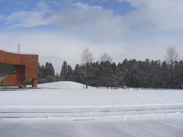 雪景色★11月20日_d0027501_11474523.jpg