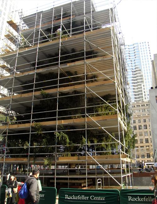 ニューヨークにクリスマスがやってきます_b0007805_181525100.jpg