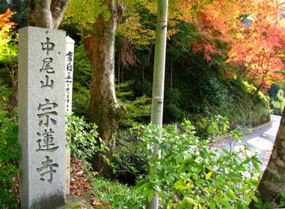 紅葉を訪ねて 宗蓮寺_e0048413_21264999.jpg