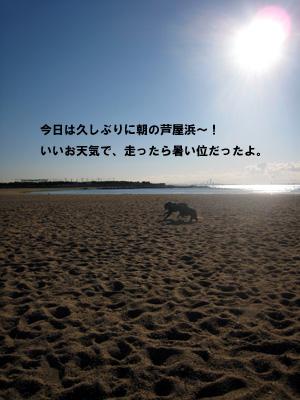 f0015314_201163.jpg