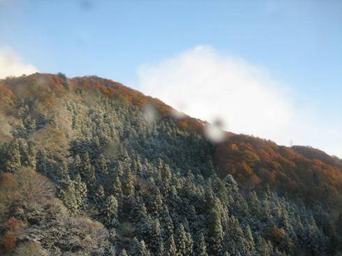 冬の到来_f0067514_231135100.jpg