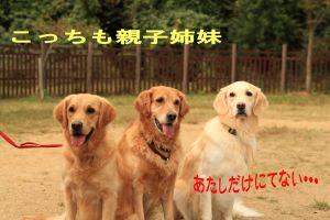 b0008217_1063858.jpg