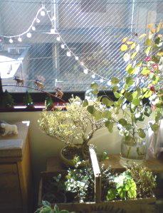 真冬の光の日。_f0064823_0134630.jpg