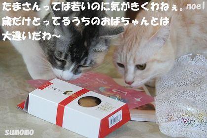 f0063729_15354846.jpg