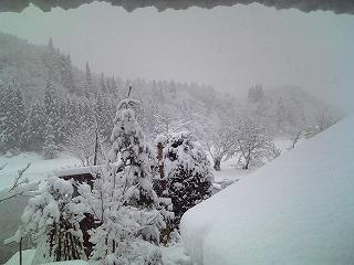 初雪 多すぎ!_f0032130_16291638.jpg