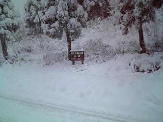 初雪 多すぎ!_f0032130_163061.jpg