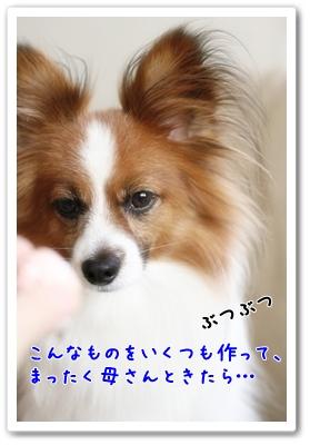 d0013149_1234514.jpg