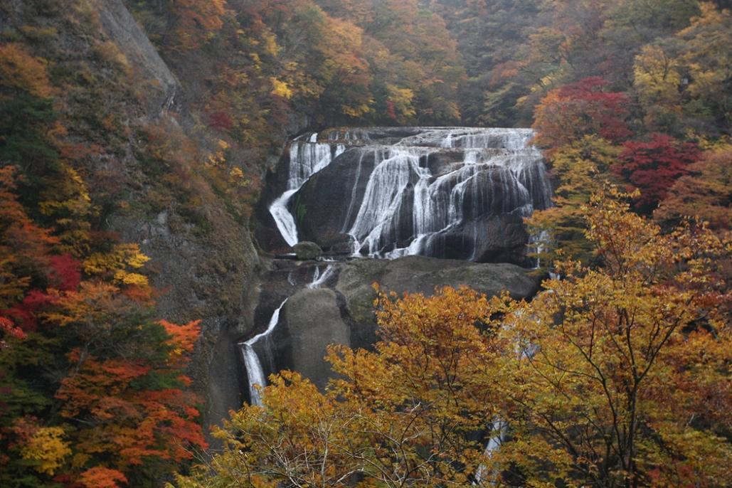 袋田の滝 紅葉<4> 2008年11月15日_e0143883_1826372.jpg