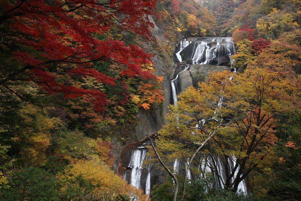 袋田の滝 紅葉<4> 2008年11月15日_e0143883_18293793.jpg
