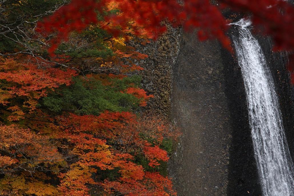 袋田の滝 紅葉<4> 2008年11月15日_e0143883_1830366.jpg