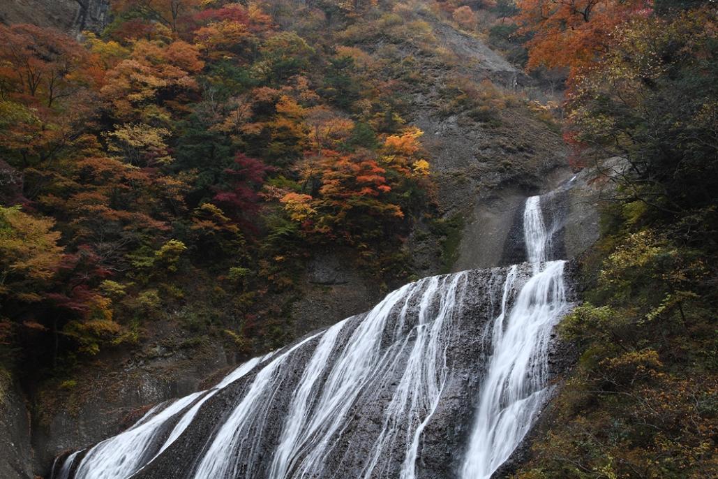 袋田の滝 紅葉<4> 2008年11月15日_e0143883_18343290.jpg