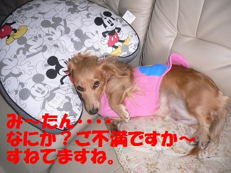 f0178701_20105055.jpg