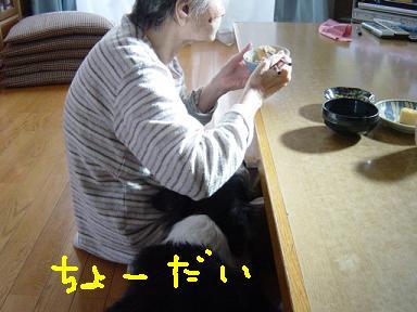 b0085331_7292060.jpg