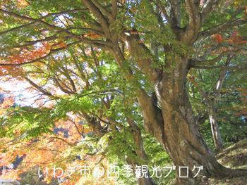 f0105342_14591262.jpg