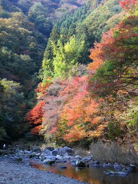 京都トレッキング&オフ会_f0162861_14165928.jpg
