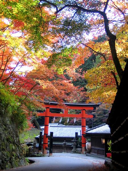 京都トレッキング&オフ会_f0162861_14195099.jpg