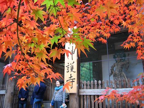 京都トレッキング&オフ会_f0162861_1424125.jpg