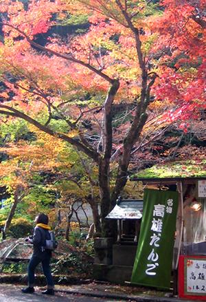 京都トレッキング&オフ会_f0162861_146868.jpg