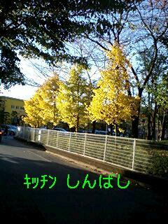 f0197761_13412295.jpg
