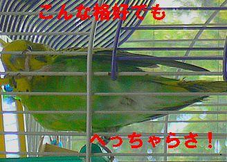 f0196665_23281524.jpg