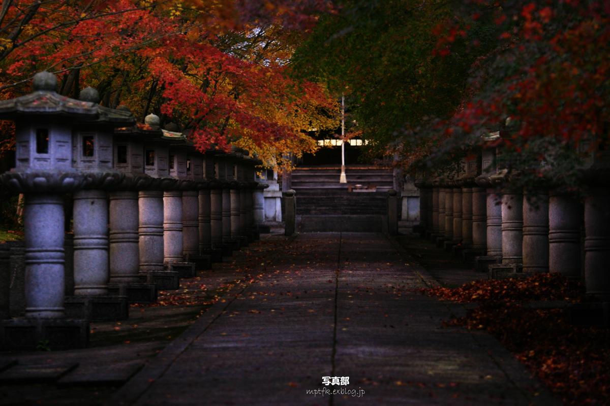 兵庫 丹波市 <高山寺>_f0021869_043454.jpg