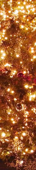 ニューヨークのクリスマス・スポット&イベント情報まとめ_b0007805_23245485.jpg