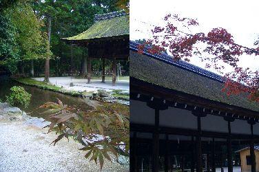 秋 京都 その1_e0127625_9223162.jpg