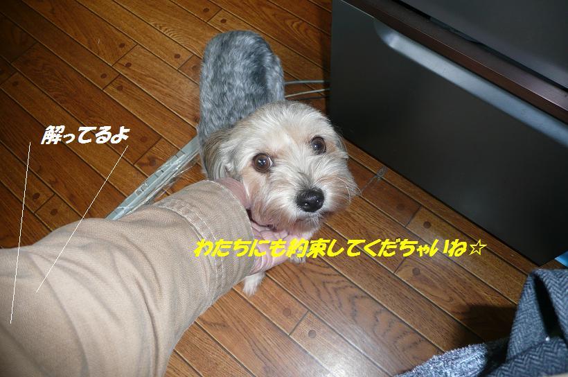 f0114128_10174616.jpg