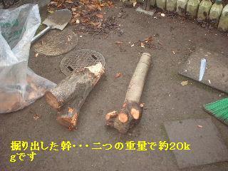 f0031037_20394342.jpg