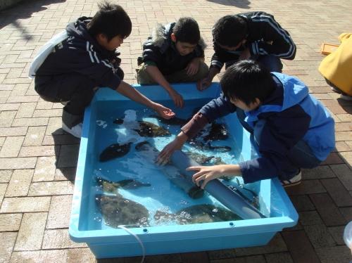 「魚庭の海づくり大会」_c0108460_2031567.jpg