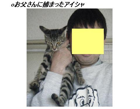 b0112380_11455812.jpg