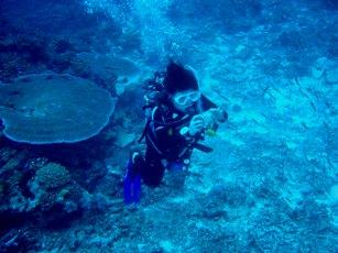 シミラン諸島☆ステキングぅ~☆_f0144385_9153.jpg