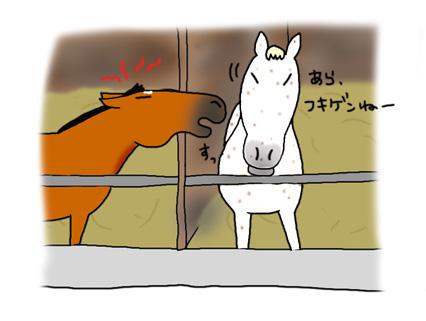最近のナっちゃん_a0093189_11584242.jpg