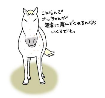 最近のナっちゃん_a0093189_1202935.jpg