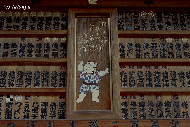 Nov.  22  (Sat)   伝統  ~ リケノン テスト撮影 5_f0139991_21152091.jpg