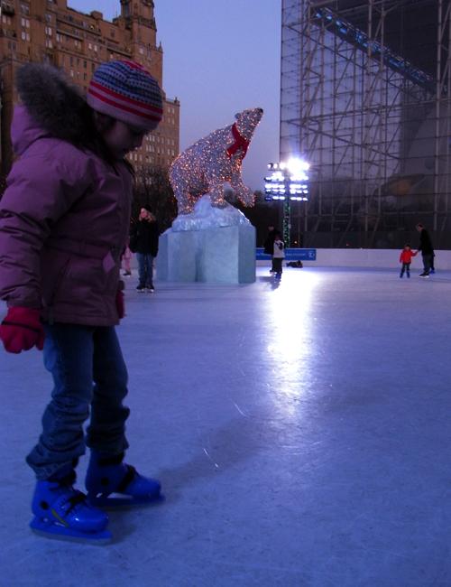 自然史博物館にスケートリンク登場 The Polar Rink_b0007805_15541344.jpg