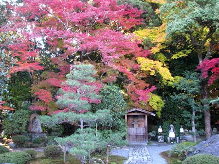 紅葉を訪ねて 西方寺_e0048413_21565083.jpg