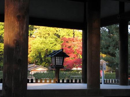 紅葉盛り 上賀茂神社2_e0048413_2318191.jpg